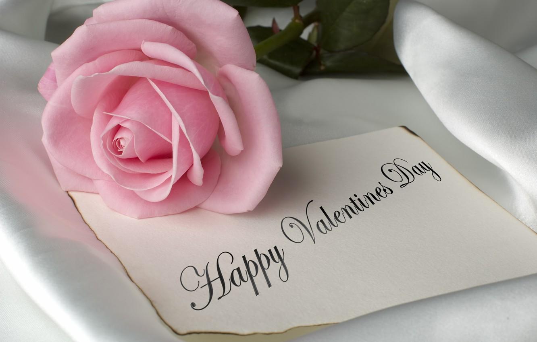 Photo Wallpaper Flowers, Pink, Romance, Rose, Rose, - Rose Happy Valentine Day - HD Wallpaper
