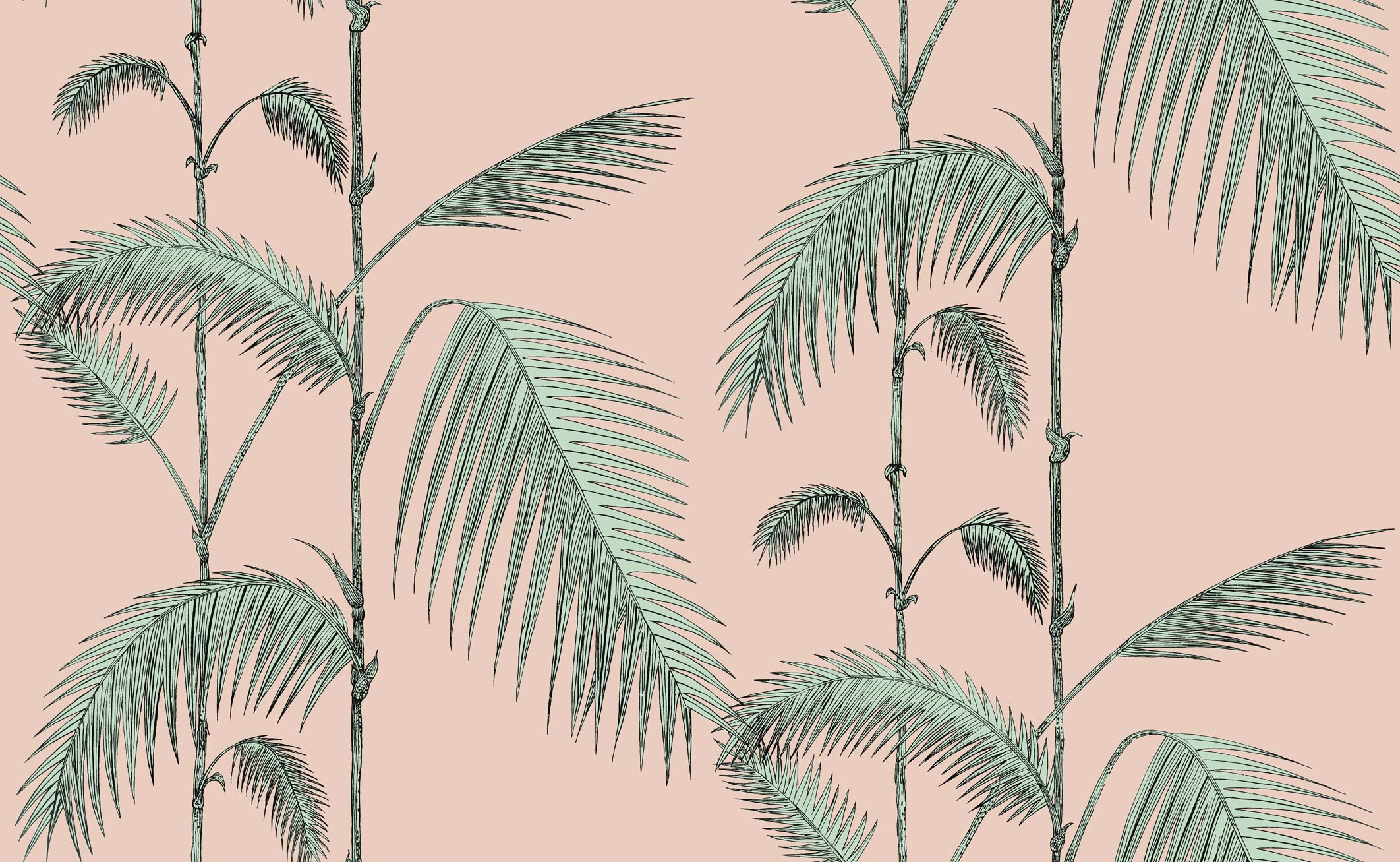 Palm Leaves Wallpaper Cole And Son Icons Palm Leaves 2124x1307 Wallpaper Teahub Io Leaves wallpapers, backgrounds, images— best leaves desktop wallpaper sort wallpapers by: palm leaves wallpaper cole and son