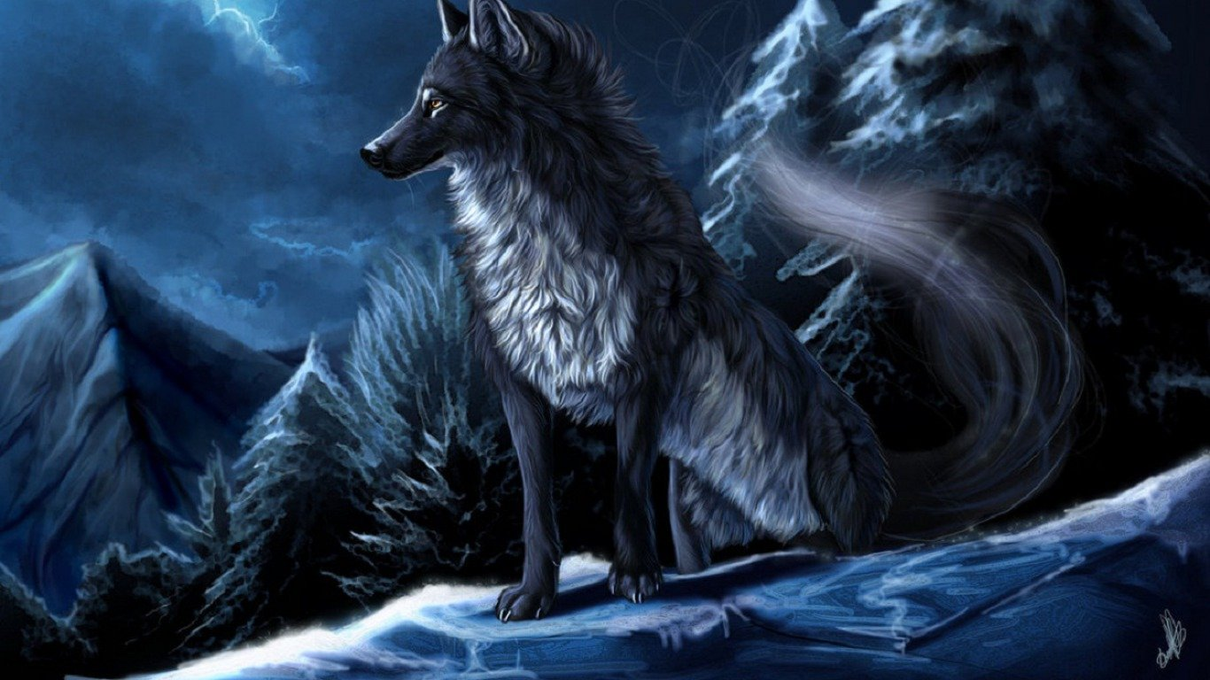 Best Wolf Wallpaper Id Black Wolf Background Anime 1366x768 Wallpaper Teahub Io