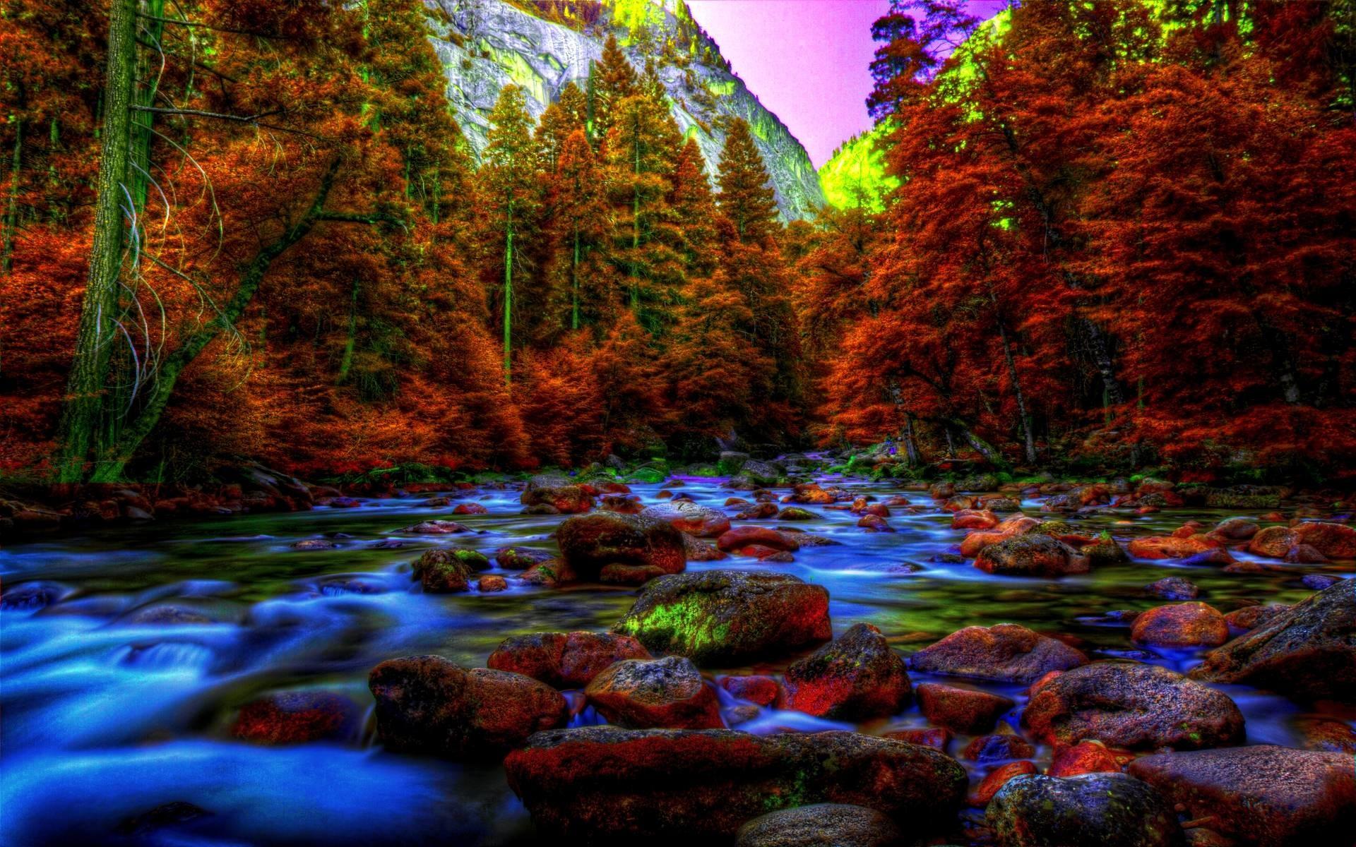 Hd Yosmite In Autumn Wallpaper Fall Wallpaper Hd 1920x1200 Wallpaper Teahub Io