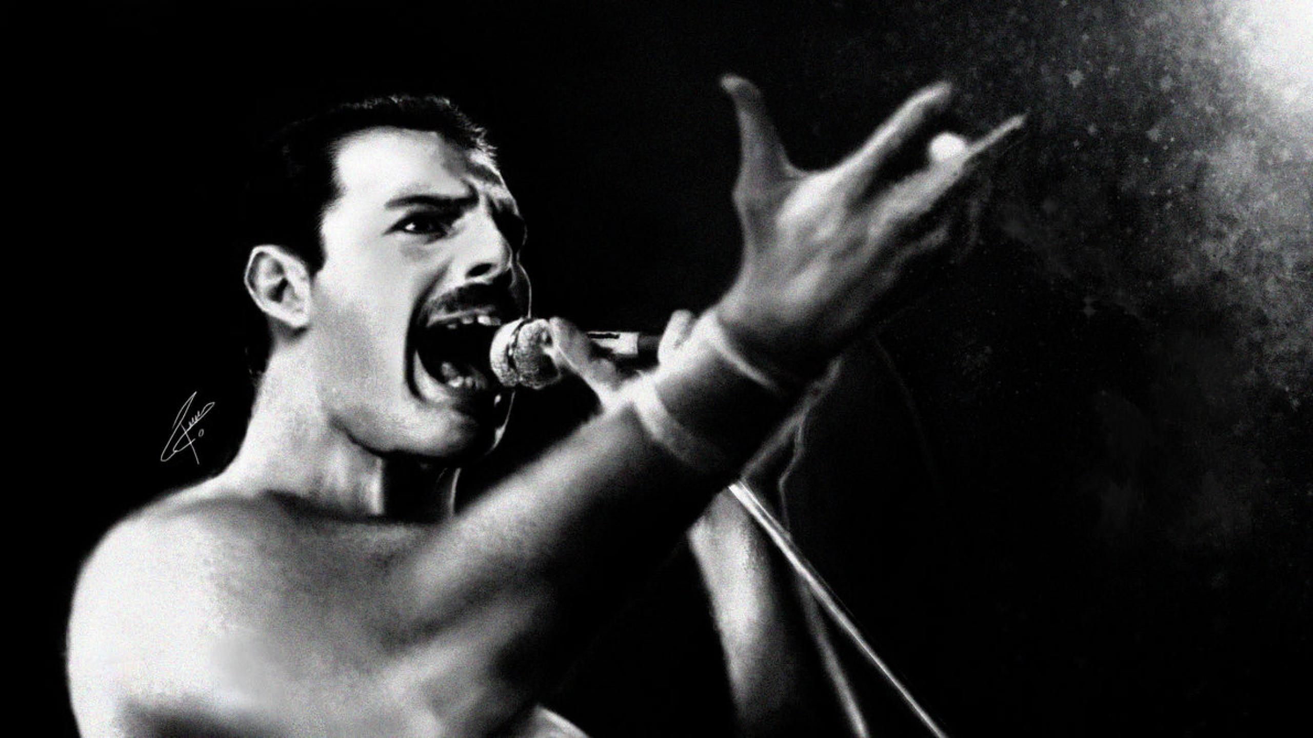 Freddie Mercury Band Queen Freddie Mercury 2560x1440 Wallpaper Teahub Io