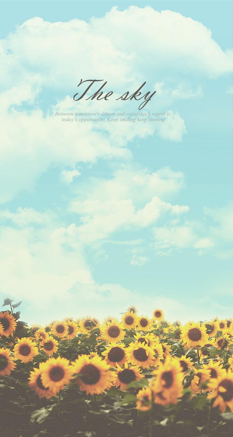 Download Iphone 21 Wallpaper Pinterest Quotes   Summer Sunflower ...
