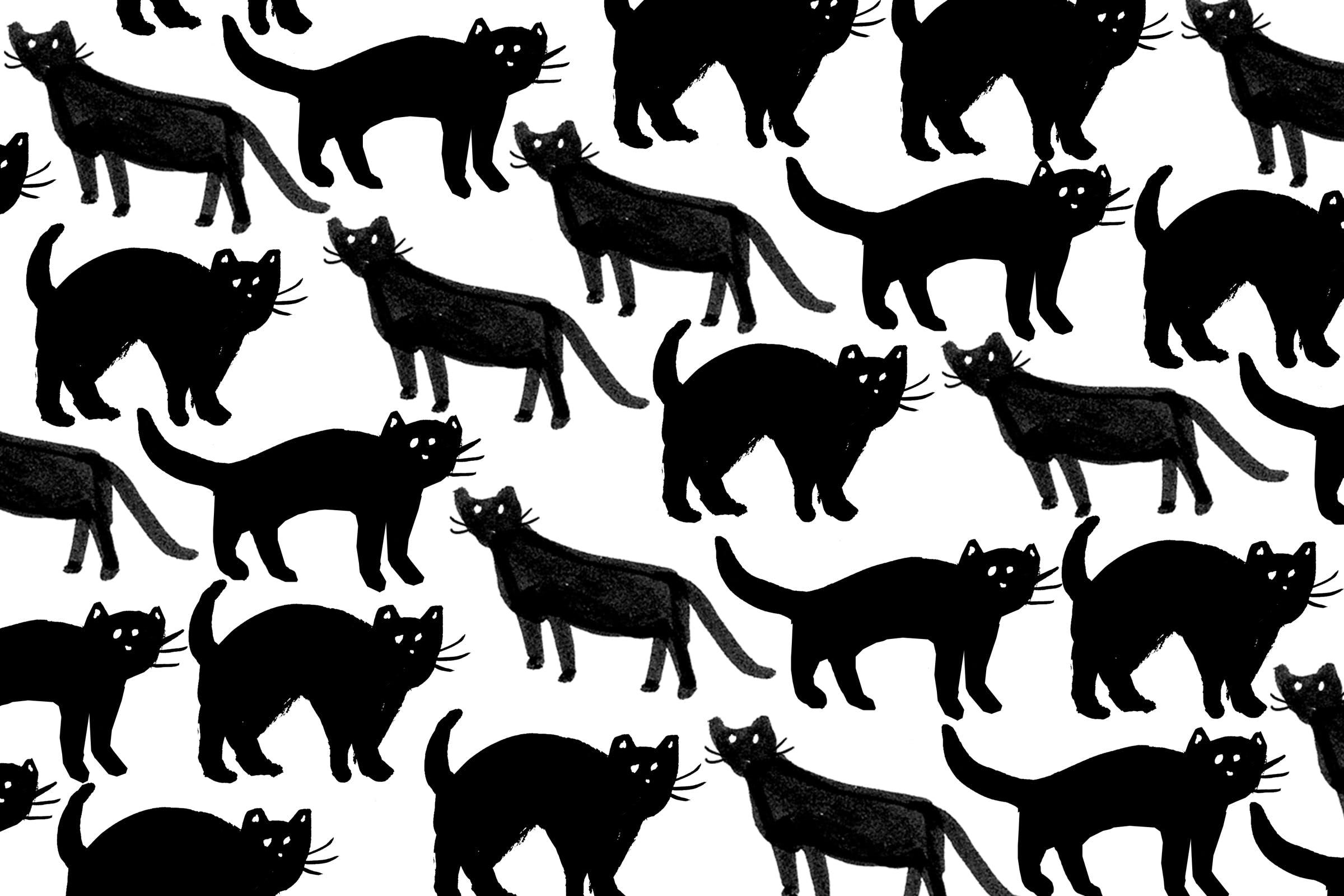 40 408230 cat halloween themed lockscreen