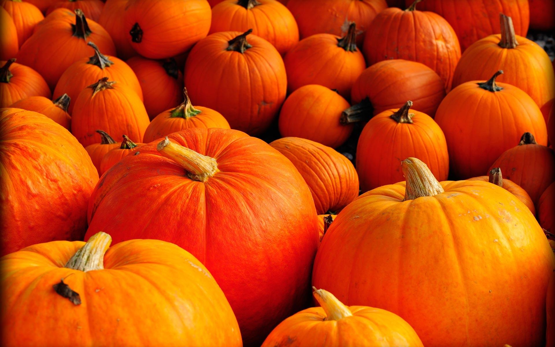 41 415714 pumpkin and autumn leaves hd desktop wallpaper fall