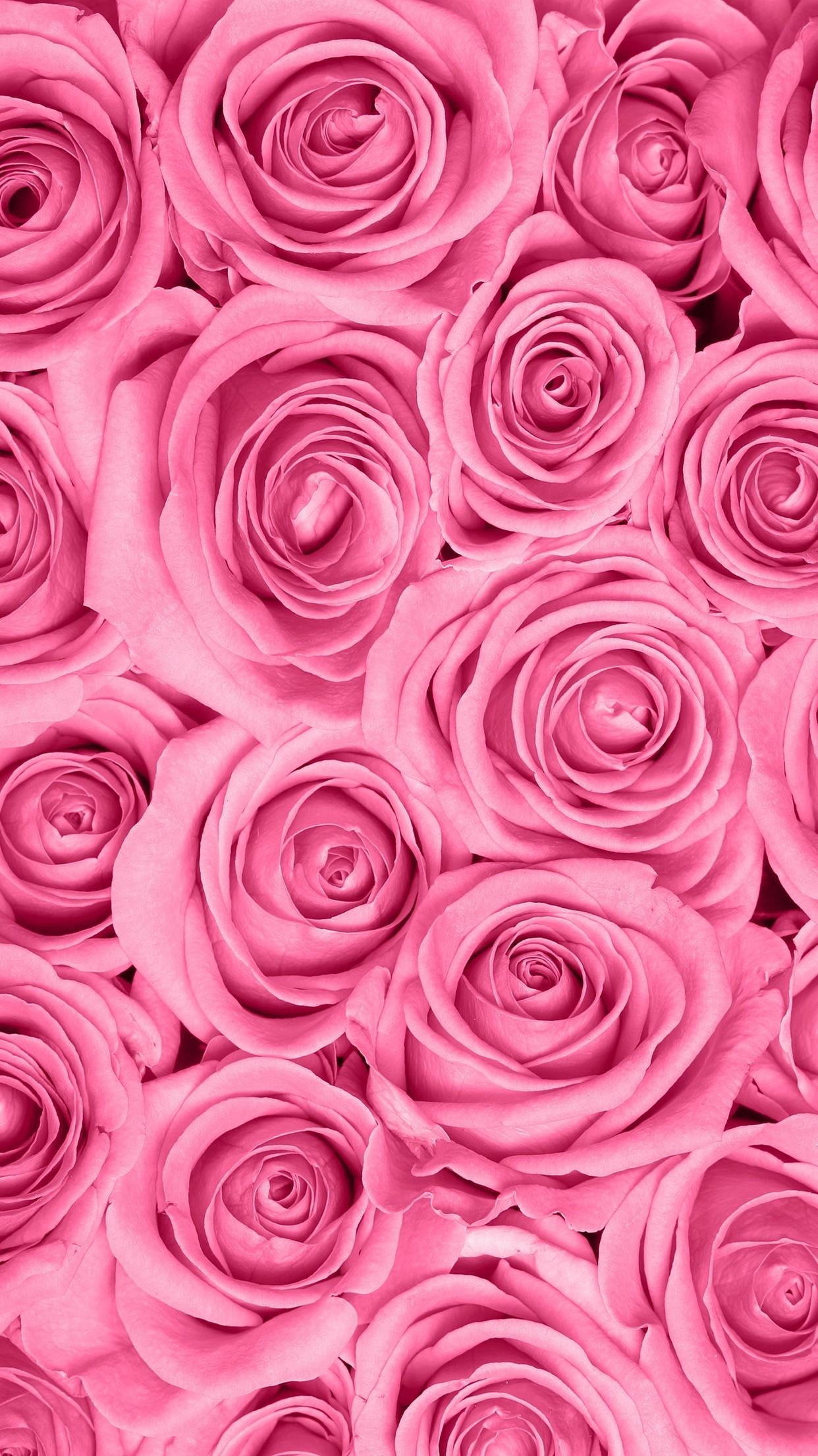 Spring Wallpaper, Rose Wallpaper, Mobile Wallpaper, - Pink Roses Wallpaper Phone - HD Wallpaper