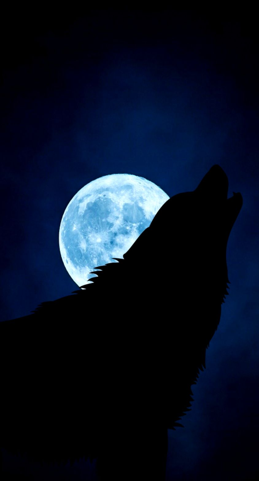 Download Wallpaper Wolf Silhouette Moon Night Iphone Wolf And Moon 844x1567 Wallpaper Teahub Io