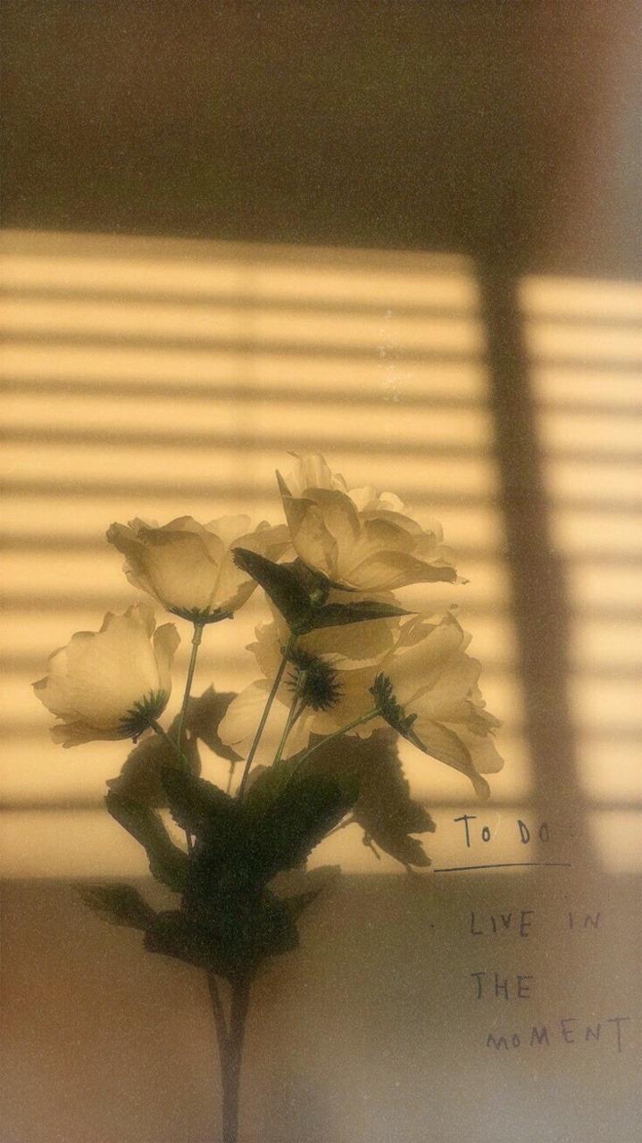 Image - Aesthetic Tumblr Wallpaper Iphone - HD Wallpaper