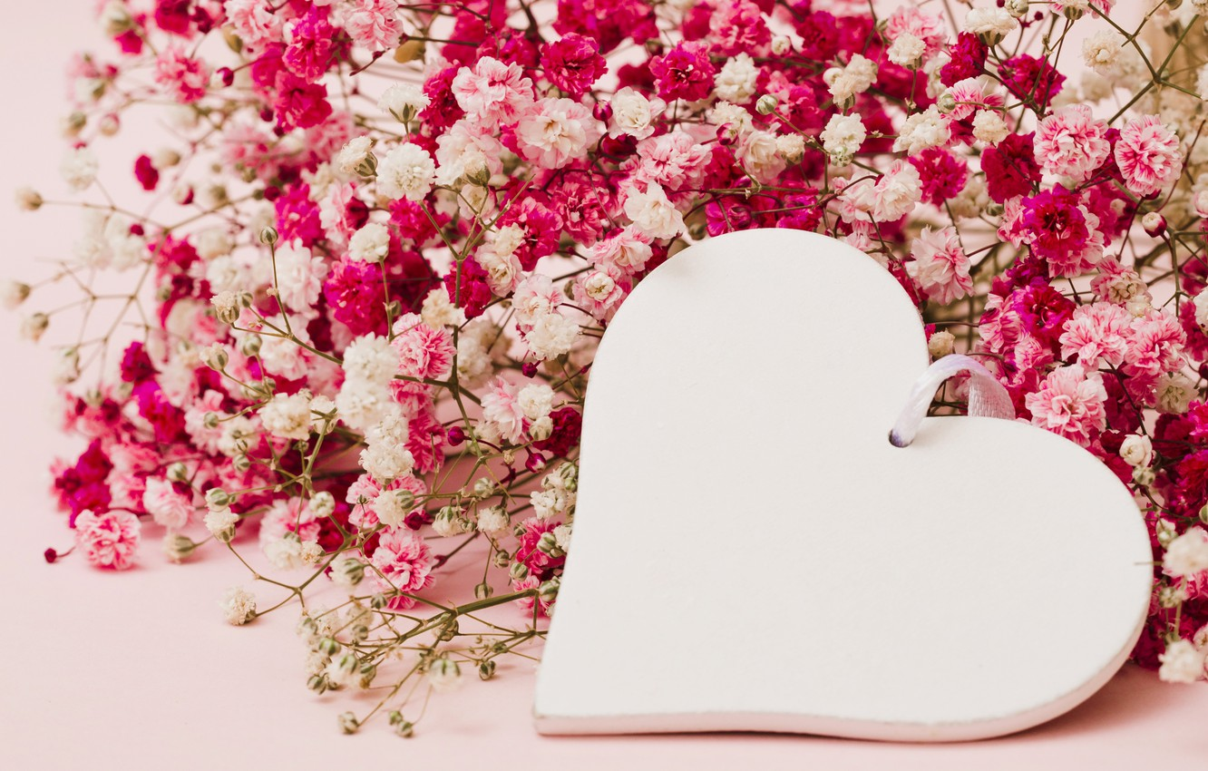 Photo Wallpaper Love, Flowers, Background, Pink, Heart, - Heart Love Flower Background - HD Wallpaper
