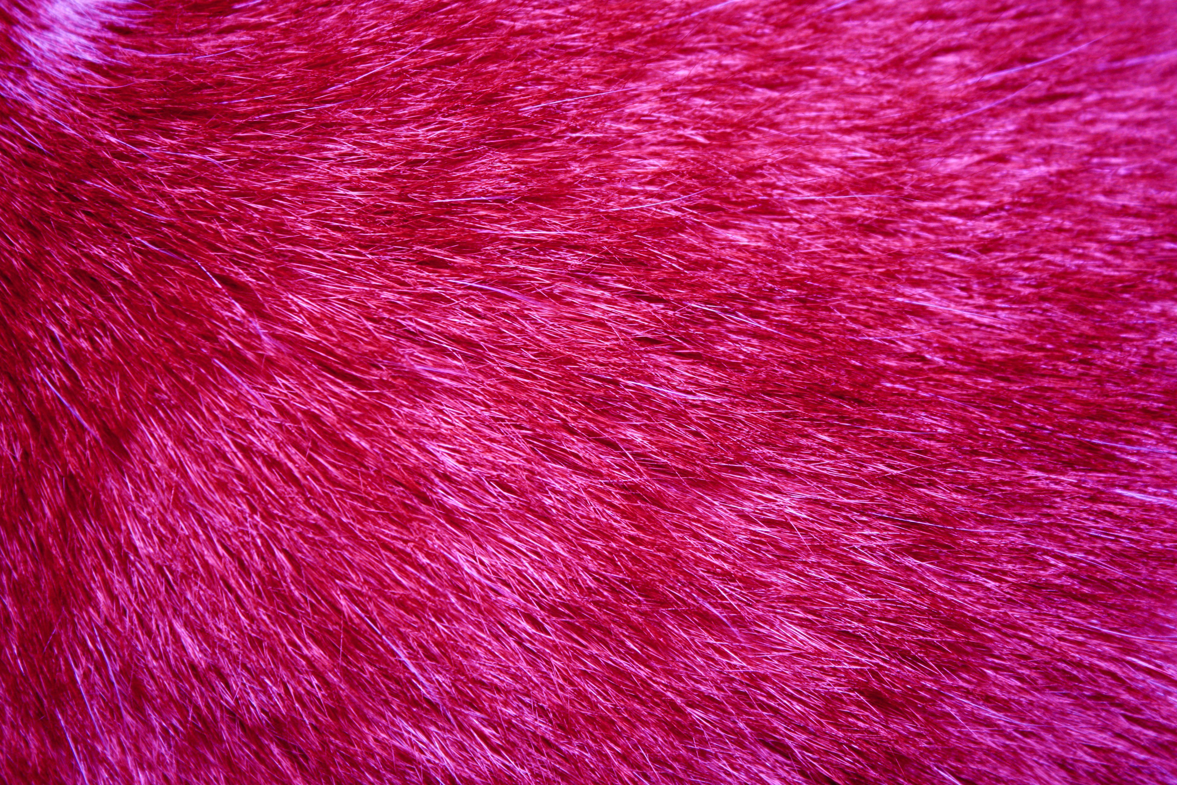 Hot Pink Wallpaper - Hot Pink Fur Hd - HD Wallpaper