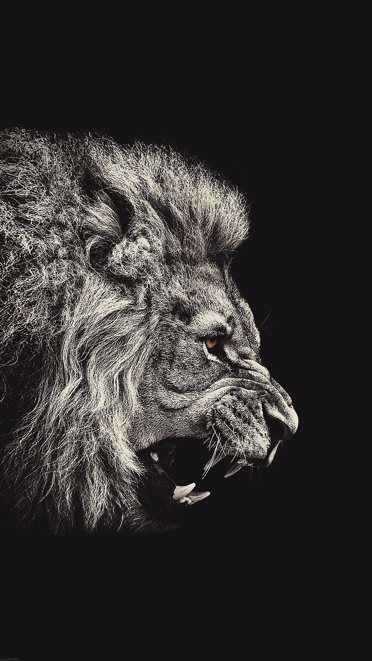 Lion Wallpaper Iphone 7 Resolution - Lion Wallpaper Iphone - HD Wallpaper