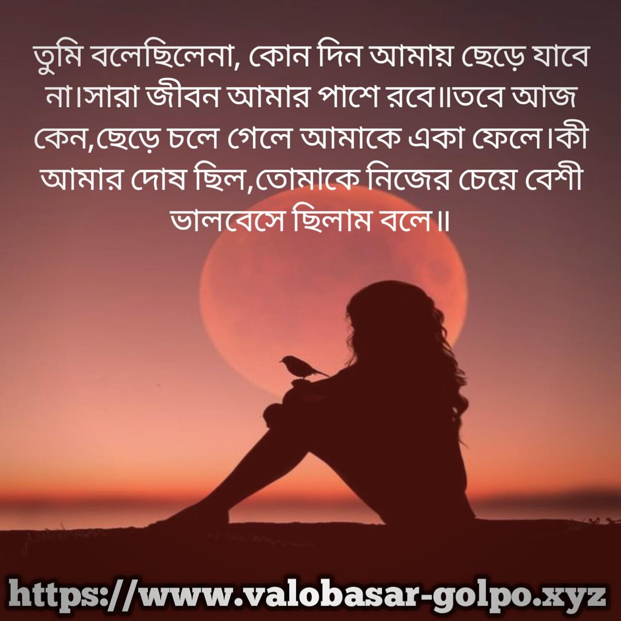 Bangla Koster Picture ,valobashar Koster Photo ,bengali - Girl Bird Moon Dpz - HD Wallpaper