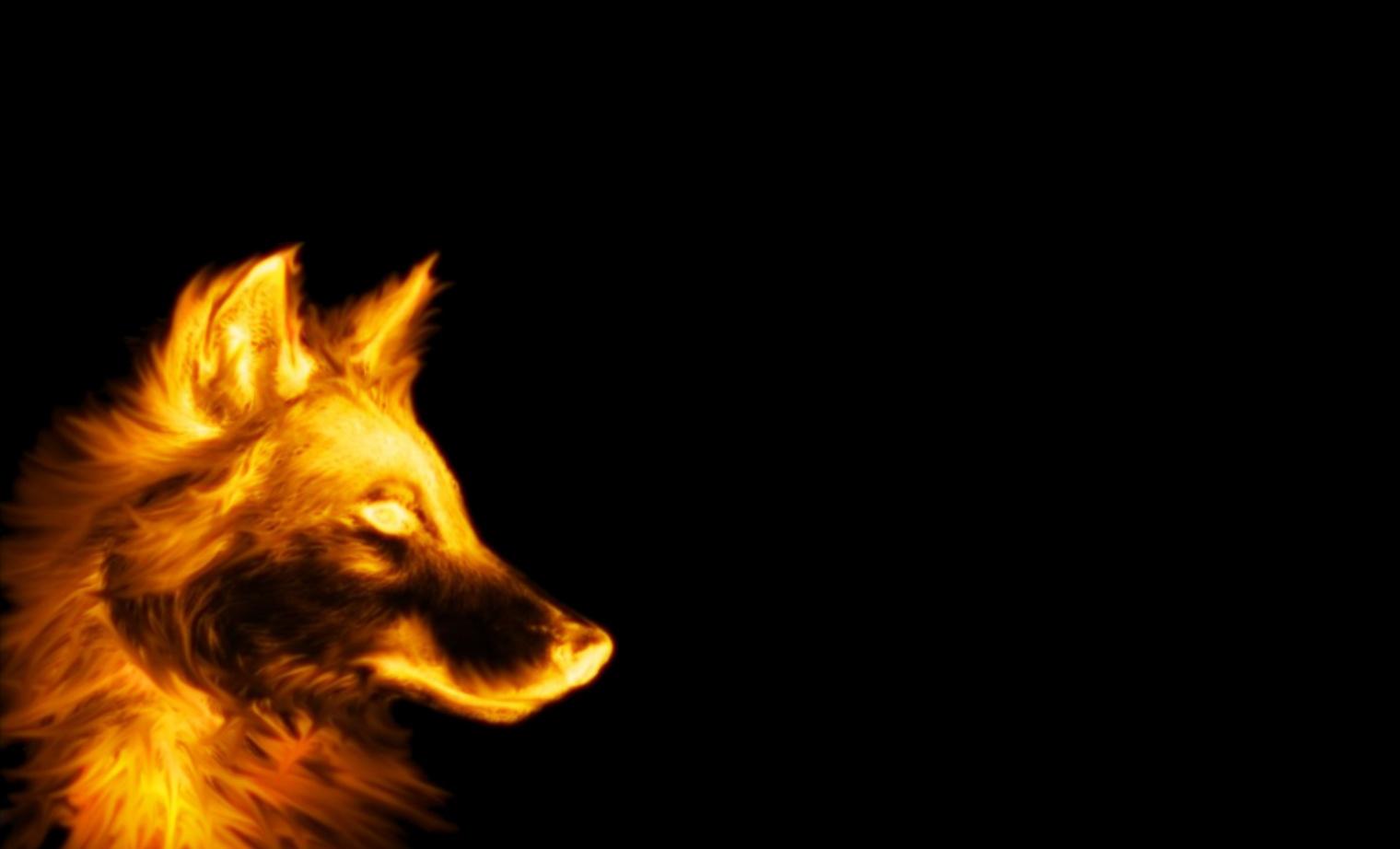 Desktop Cool Wolf Wallpaper Download 3d Hd Colour Design Cool Wallpapers Dogs 1520x922 Wallpaper Teahub Io