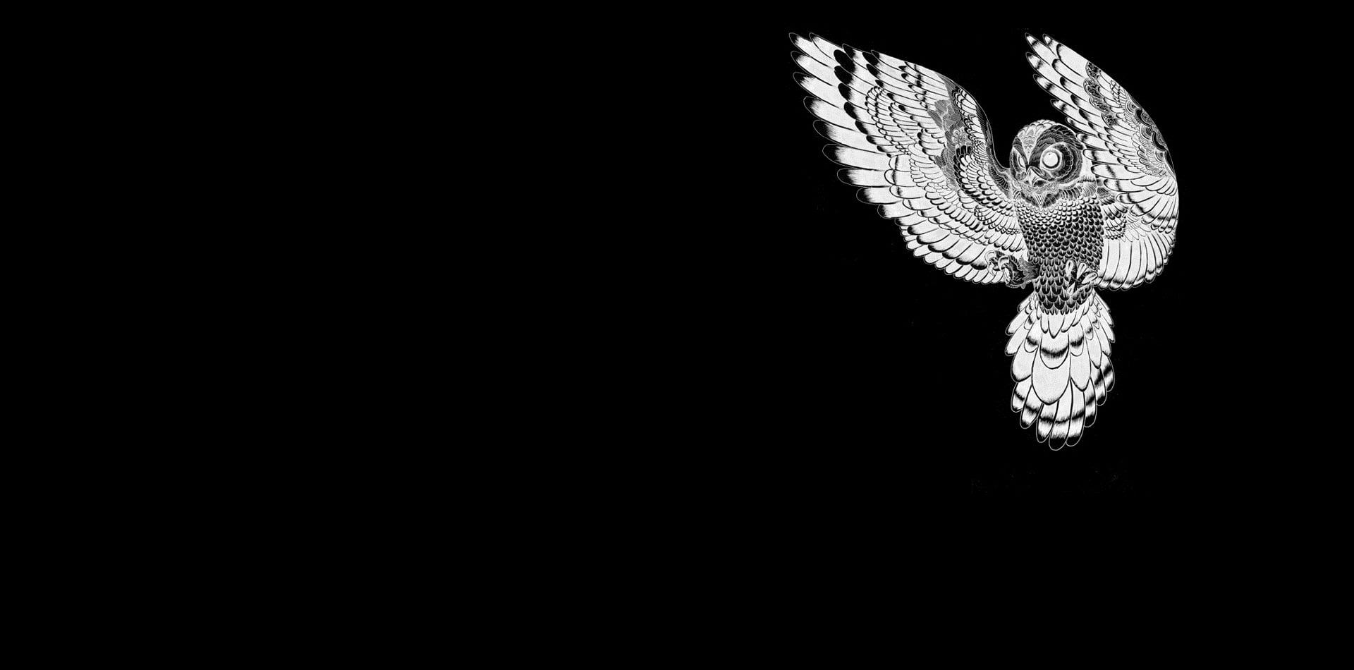 Dark Owl Wallpaper 4k 1920x950 Wallpaper Teahub Io