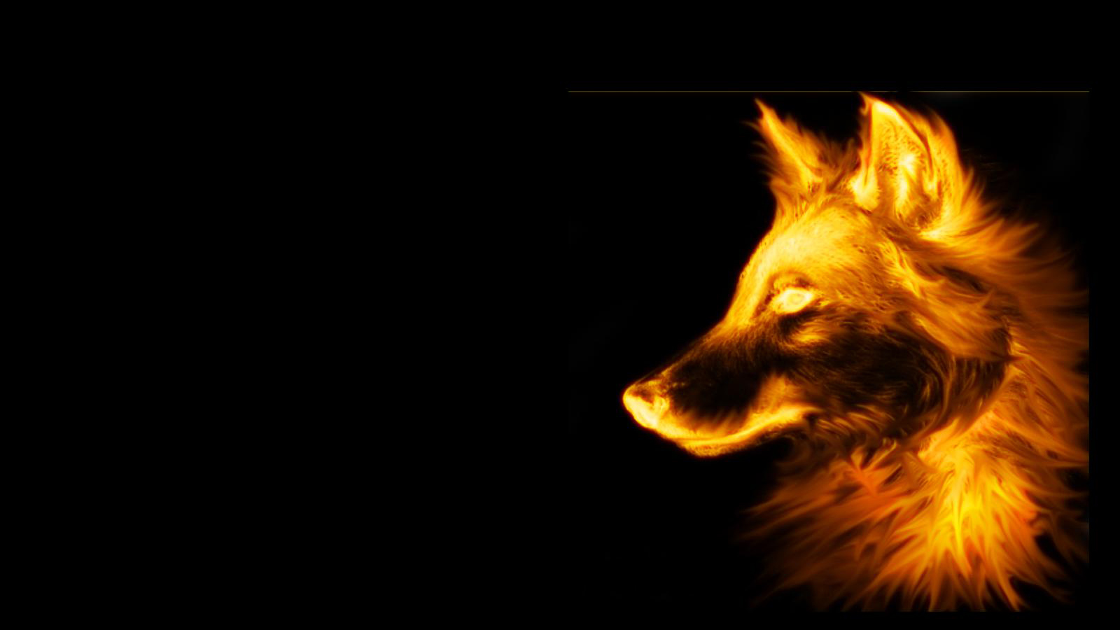 3d Fox Wallpaper Hd Fire Wolf Black Background 1600x900 Wallpaper Teahub Io