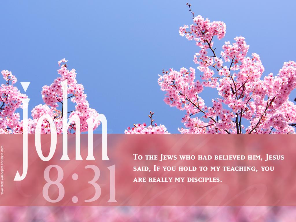 Inspirational Bible Quotes - HD Wallpaper