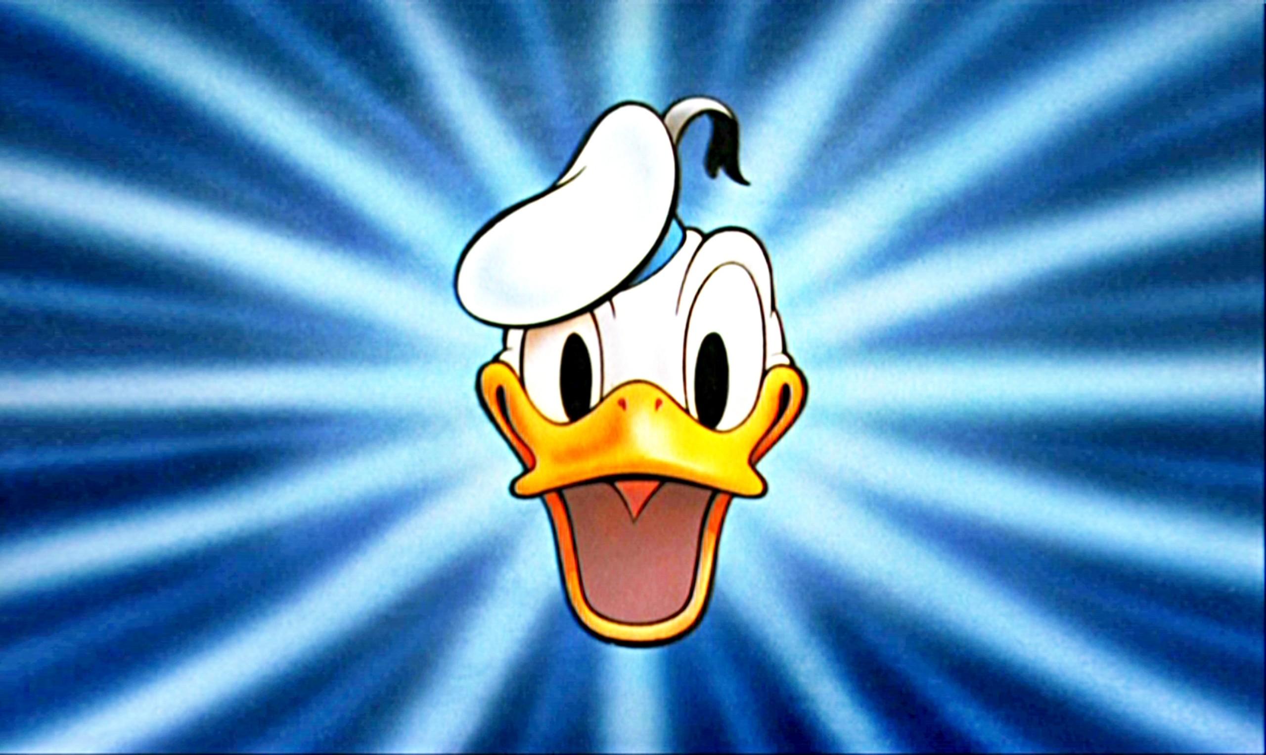 Face Donald Duck Wallpaper Kids   Data Src Beautiful - Donald Duck Wallpaper Hd - HD Wallpaper