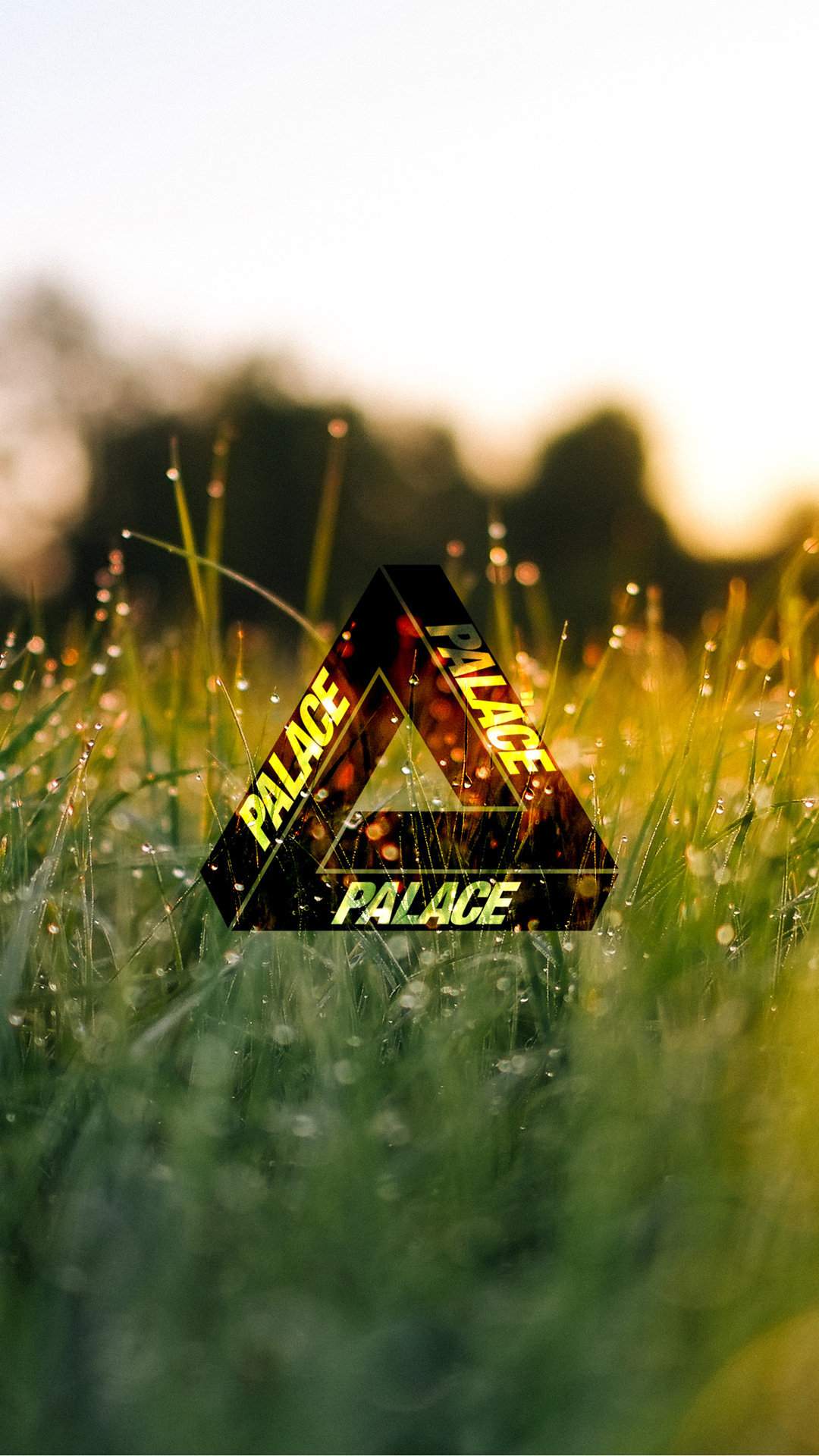 Palace Wallpaper - Backgrounds Yellow And Green Nature Aesthetic - HD Wallpaper