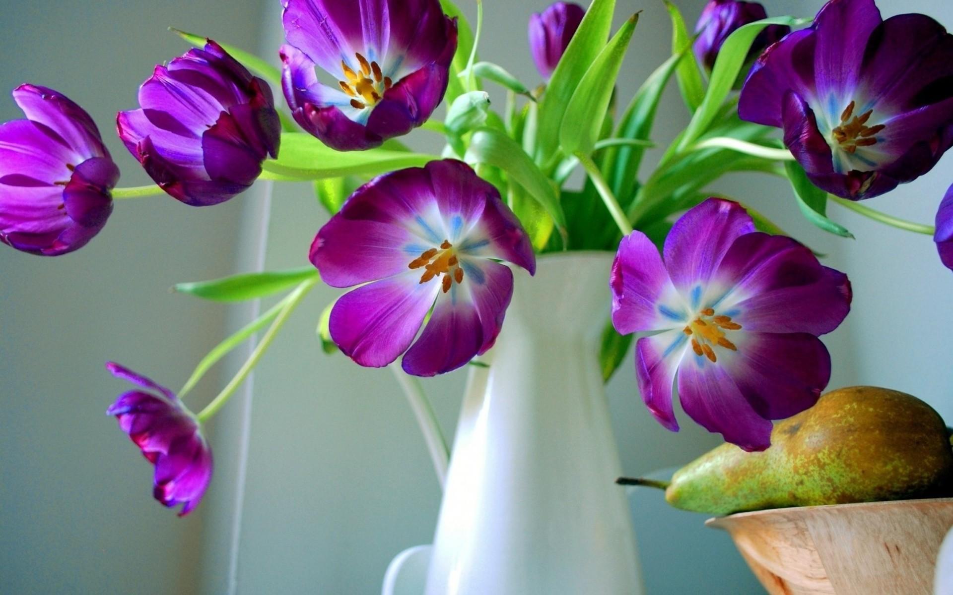 , Amazing, Still,beautiful Flower Wallpapers, Love, - Mobile Wallpaper Of Beautiful Flower - HD Wallpaper
