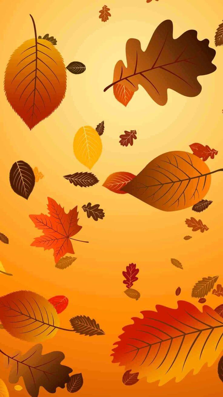 Thanksgiving Wallpaper For Iphone - Iphone 8 Plus Thanksgiving - HD Wallpaper