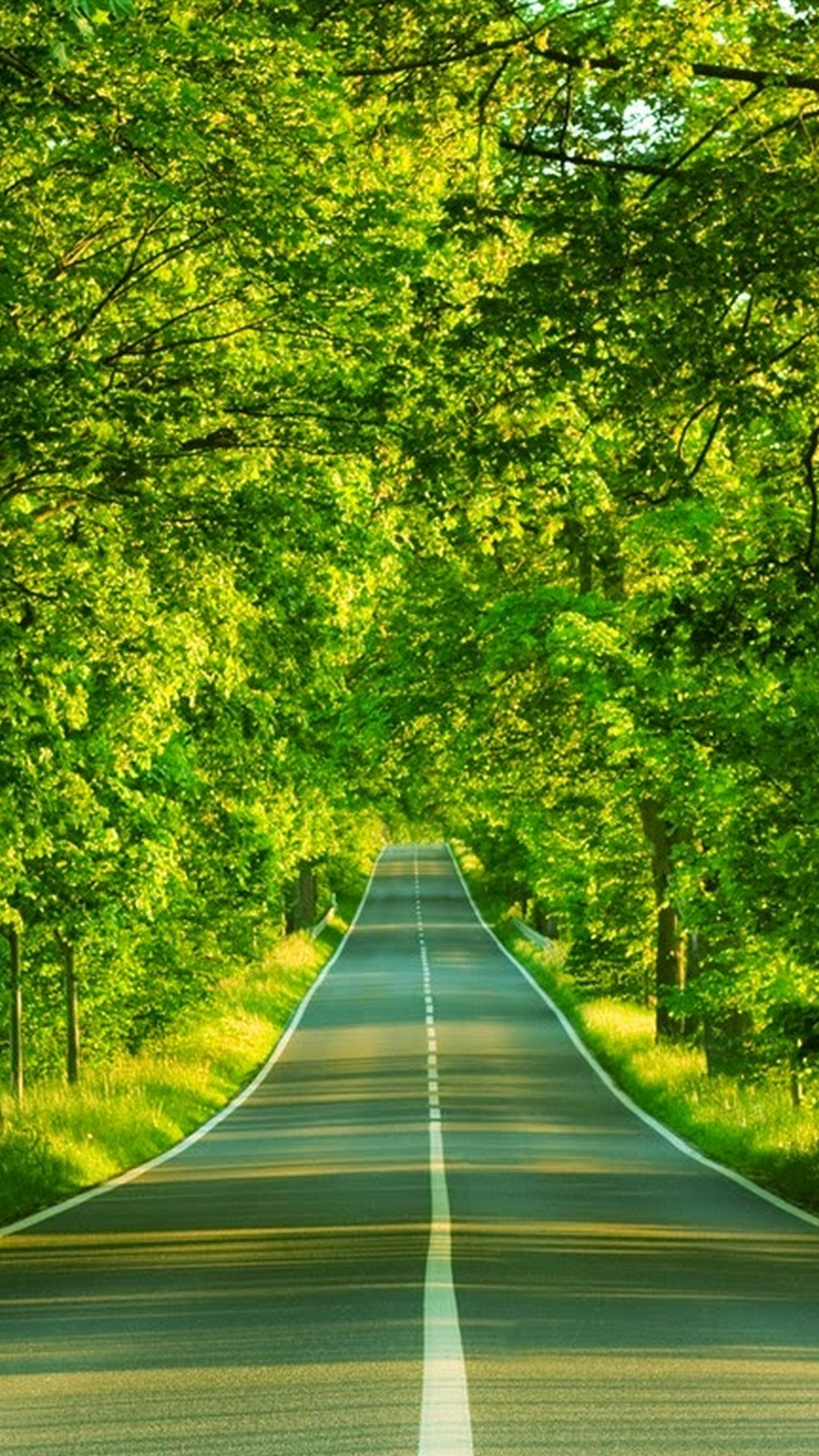 Iphone 8 Wallpaper Nature Green With Image Resolution Nature Wallpaper For Samsung J7 1080x1920 Wallpaper Teahub Io
