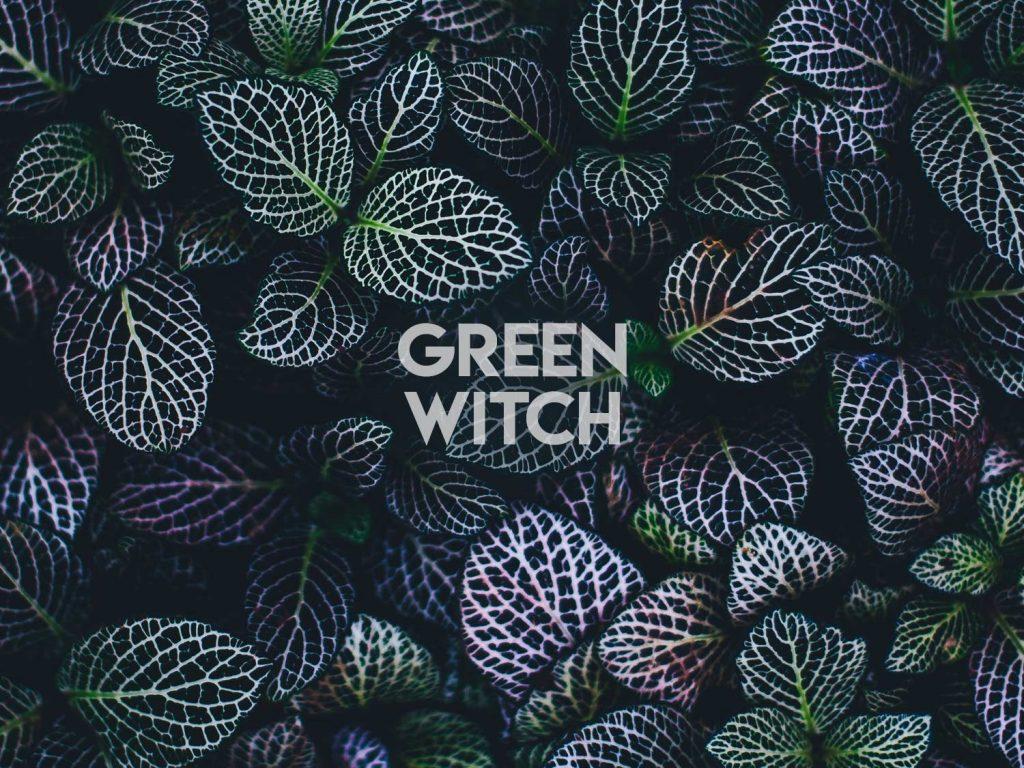 Green Witch Wicca Wallpaper Plants Wallpaper Iphone 1024x768 Wallpaper Teahub Io