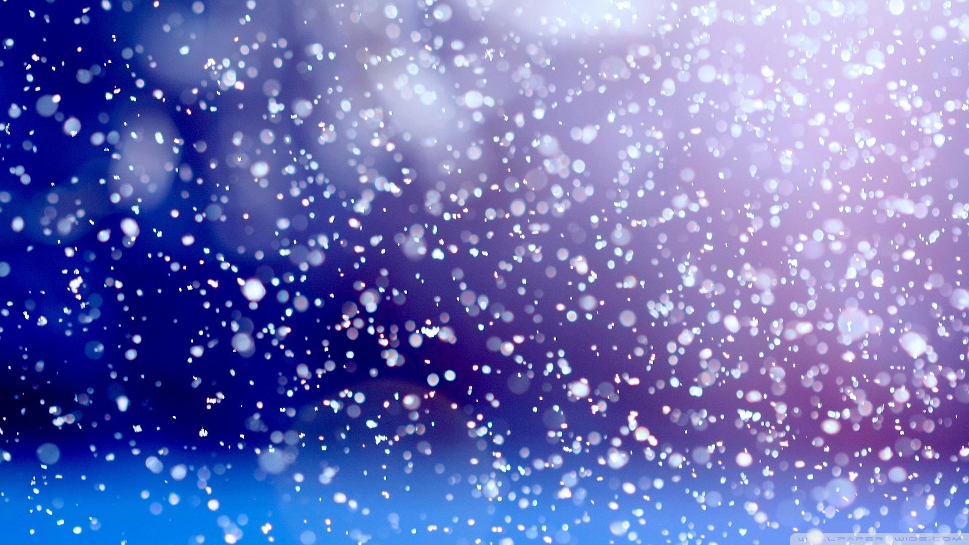 Real Snowflake Wallpaper Photo For Free Wallpaper High Resolution Snow Background 1920x1080 Wallpaper Teahub Io