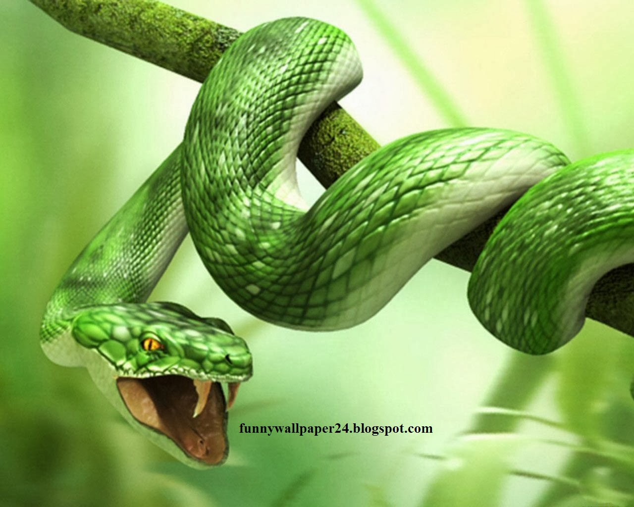 Free Live Animal Wallpaper - Hunting Snake By Judith Wright - HD Wallpaper