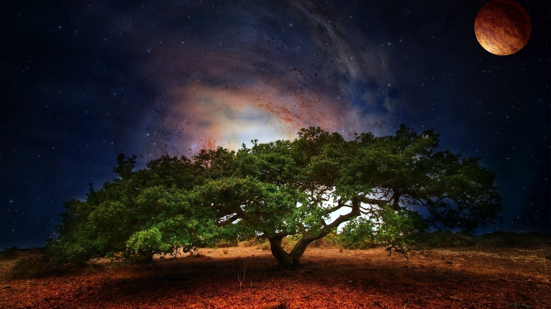Wallpaper Planet, Green, Nature, Space, Leaves, Tree - Green Nature - HD Wallpaper