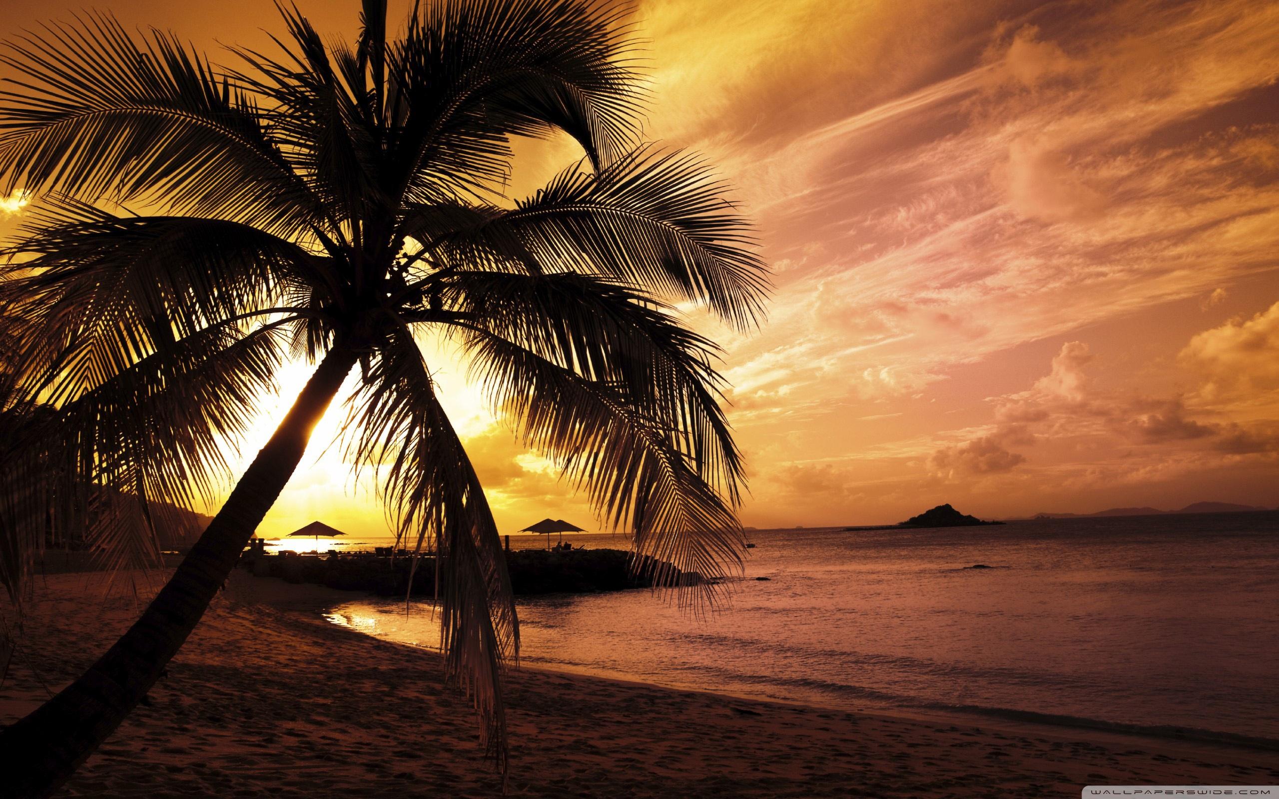 Beach Sunset Wallpaper Wide - Beach Sunset Wallpaper Hd - HD Wallpaper