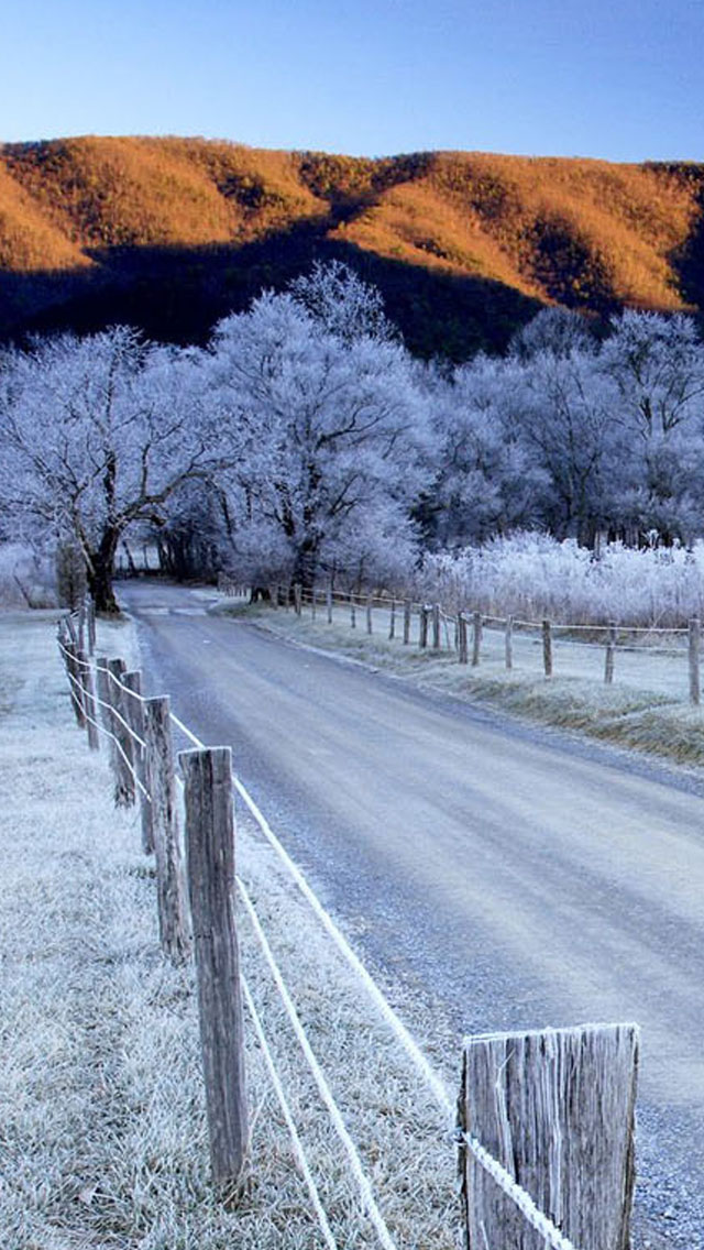 Snow Trees And Road Iphone Wallpaper - Smoky Mountain Np Winter - HD Wallpaper