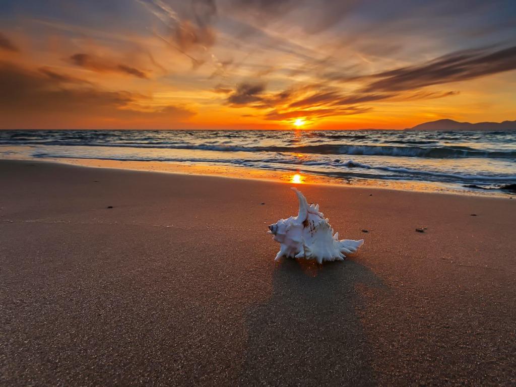 Beach Sunset Wallpaper Hd - Hd Desktop Backgrounds Beach Sunset - HD Wallpaper