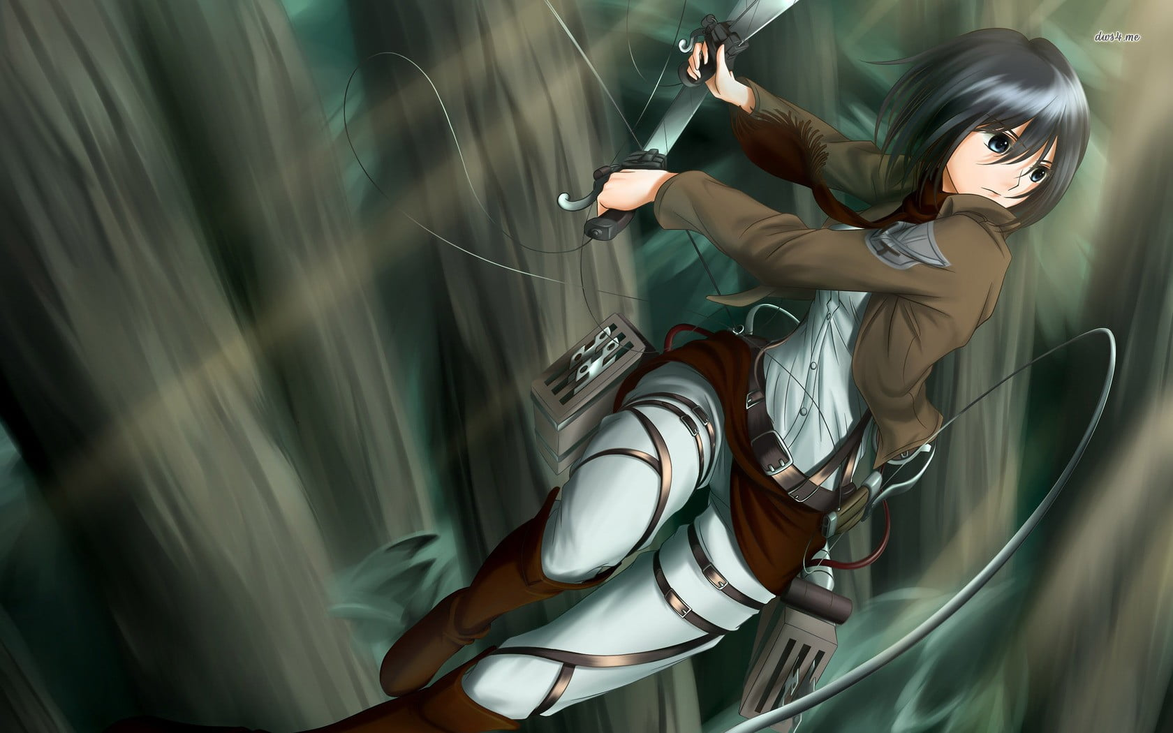 Attack On Titan Mikasa Wallpaper 1080p - HD Wallpaper