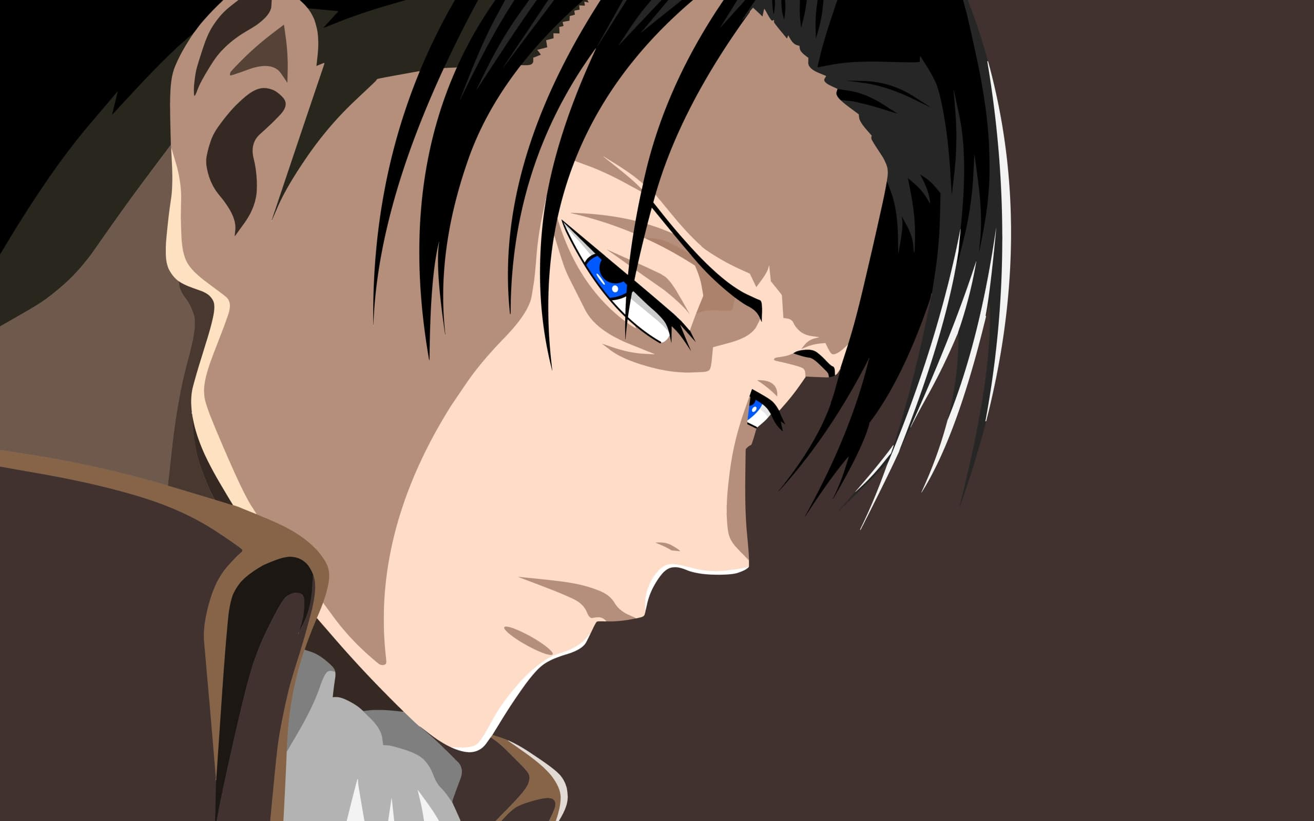 Wallpaper Of Anime Attack On Titan Levi Ackerman Levi Ackerman Wallpaper Aot Levi 2560x1600 Wallpaper Teahub Io