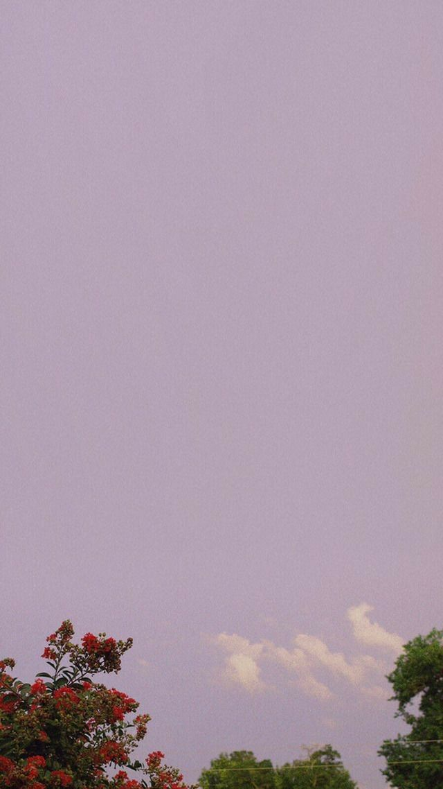 Iphone Wallpaper Aesthetic - HD Wallpaper