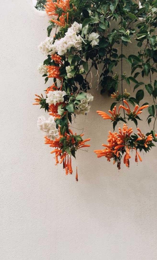 Flower Aesthetics Iphone Wallpapers Iphone Background Flower Aesthetic 655x1085 Wallpaper Teahub Io