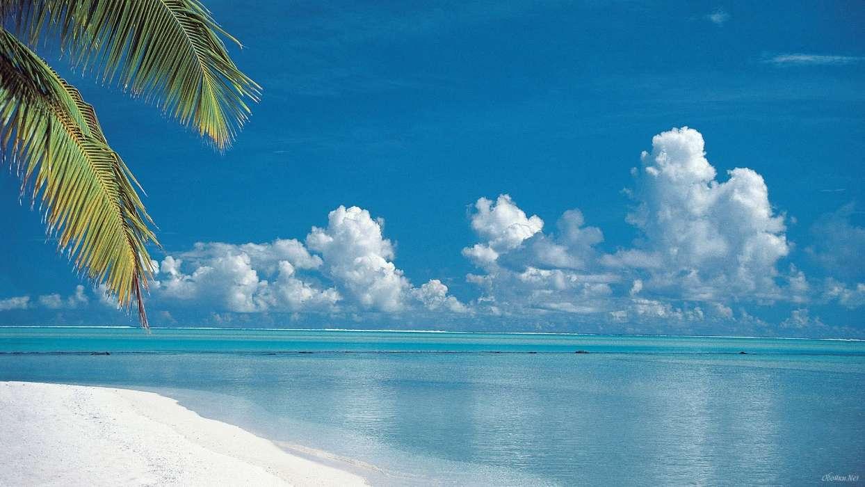 Handy Wallpaper Landschaft Sea Strand Sommer Kostenlos Tropical Beach 1244x700 Wallpaper Teahub Io