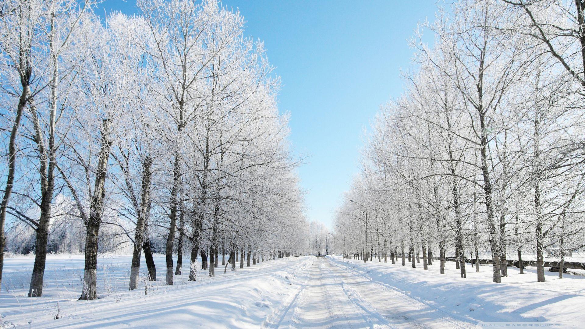 Snow Wallpaper Hd - HD Wallpaper
