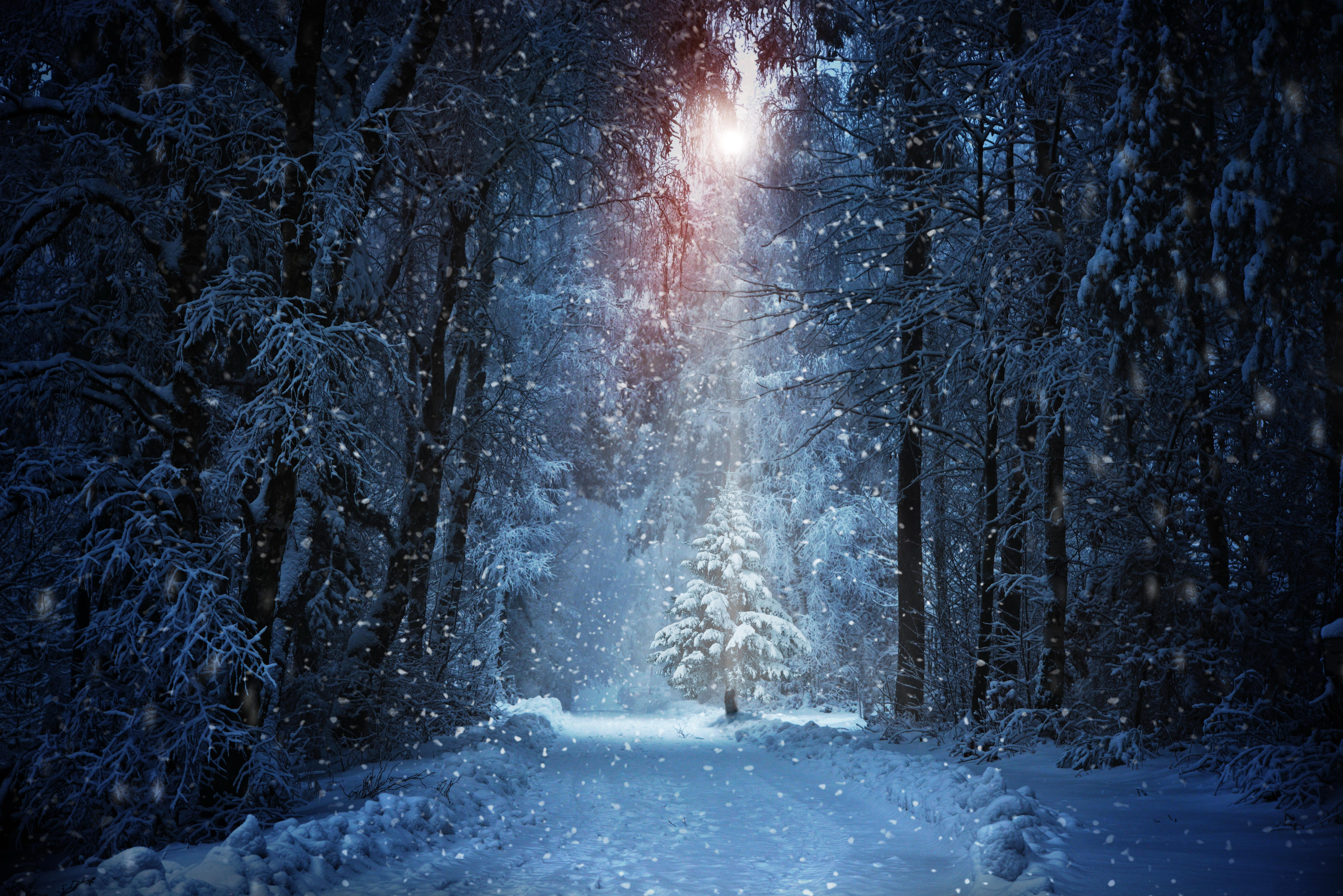 Snow Wallpaper 4k 8000x5339 Wallpaper Teahub Io