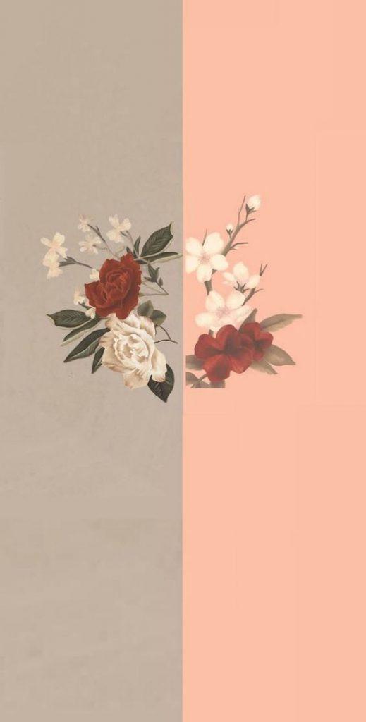 Phone Wallpaper free Phone Wallpaper Download flower - Roses Shawn Mendes Album - HD Wallpaper