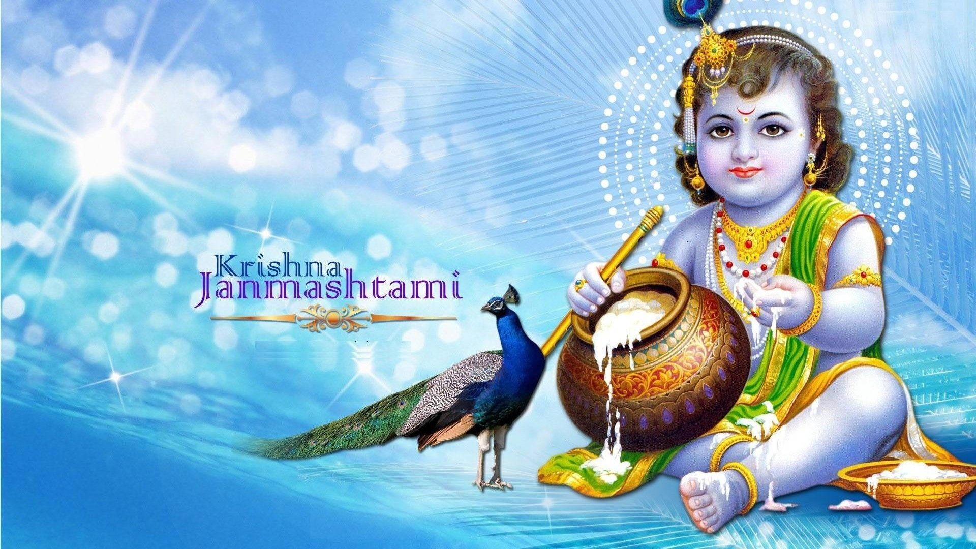 Gorgerous Lord Krishna Wallpaper 2018 Ios   Data-src - Sri Krishna Janmashtami 2018 - HD Wallpaper