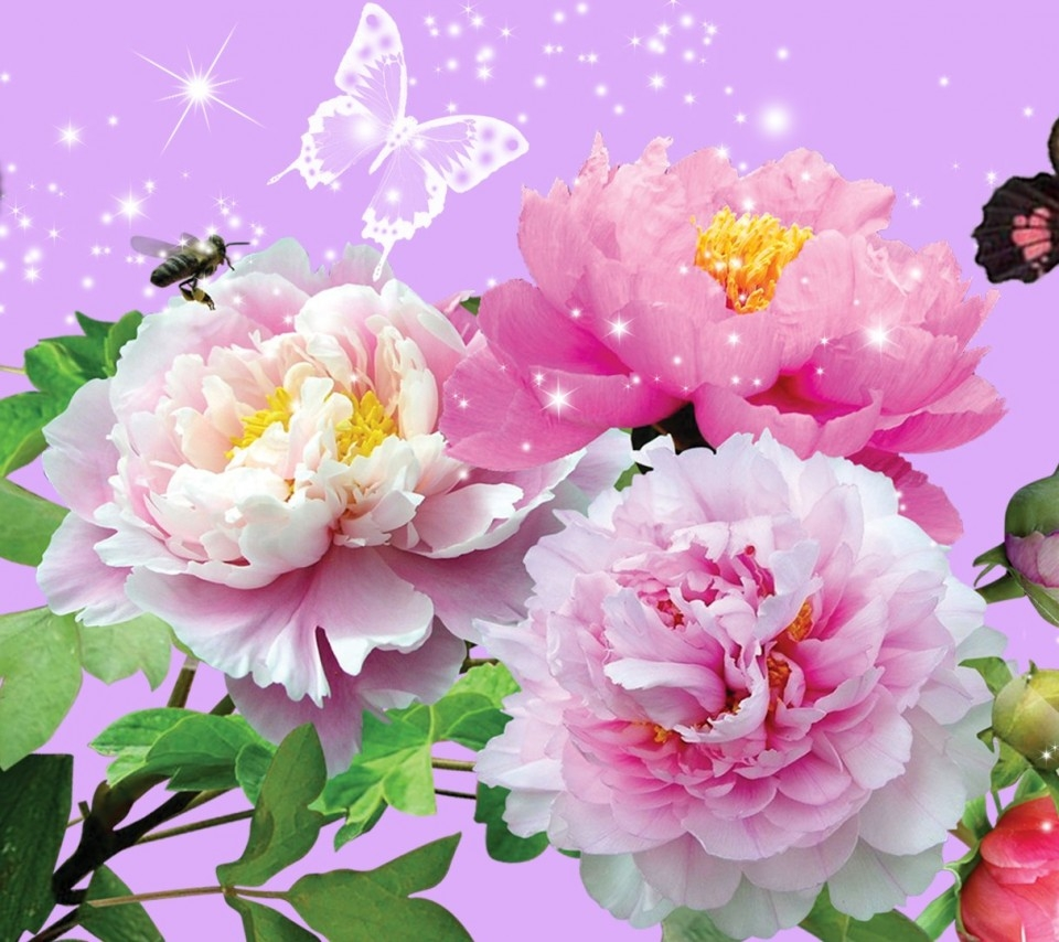 Animated Cute Love Wallpapers For Mobile Phones - Animated Wallpapers Of Flowers - HD Wallpaper