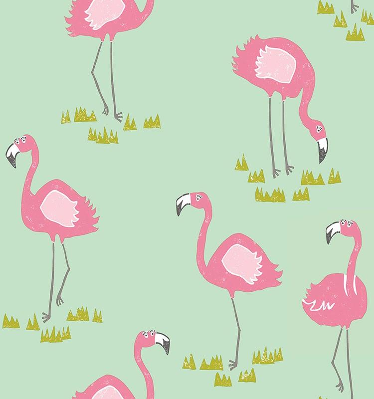 Burung Flamingo - HD Wallpaper
