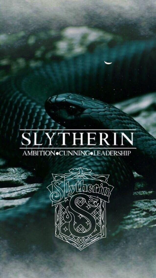Slytherin Pride - HD Wallpaper