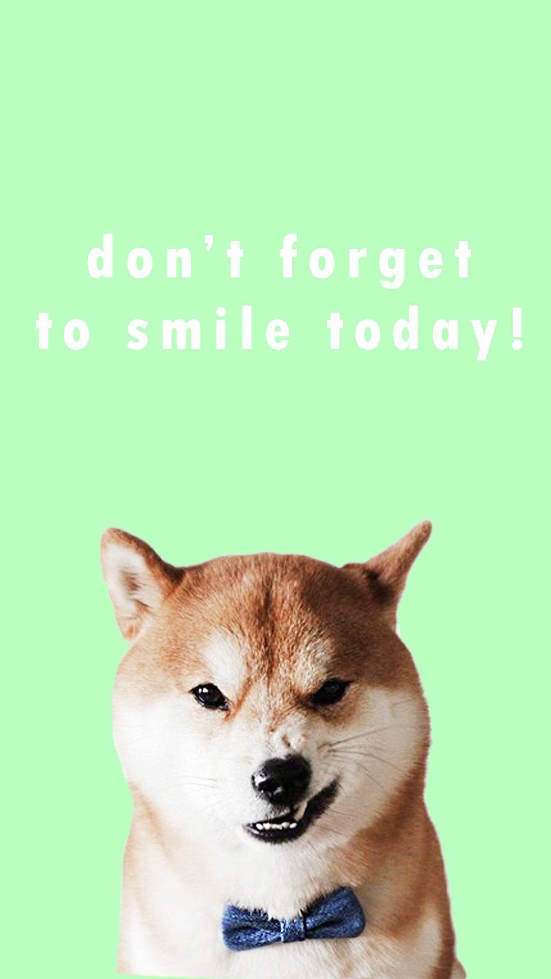 1080x1920 Shiba Inu Positive Lockscreen Wallpapers Shiba Inu Wallpaper Phone 1080x1920 Wallpaper Teahub Io