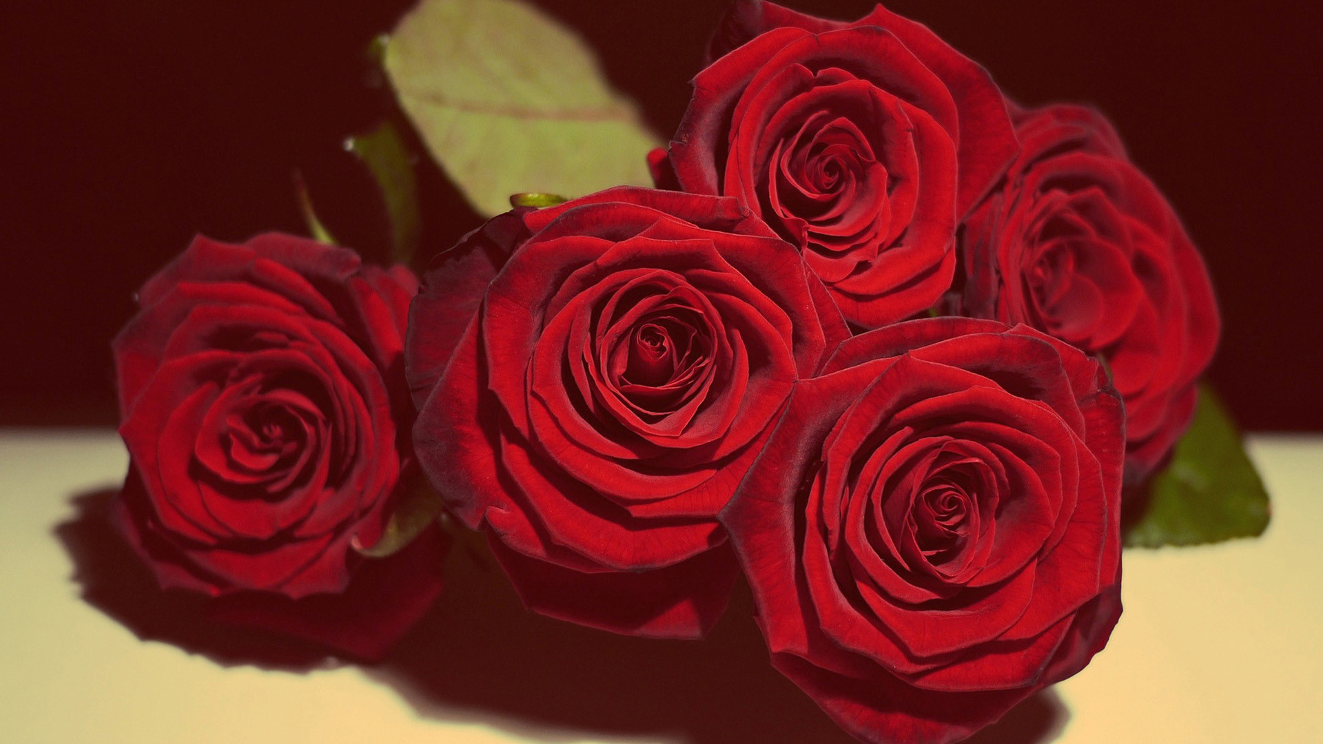 1920x1080, Live Red Roses Wallpapers Red Roses Wallpapers - Romantic Rose Red - HD Wallpaper