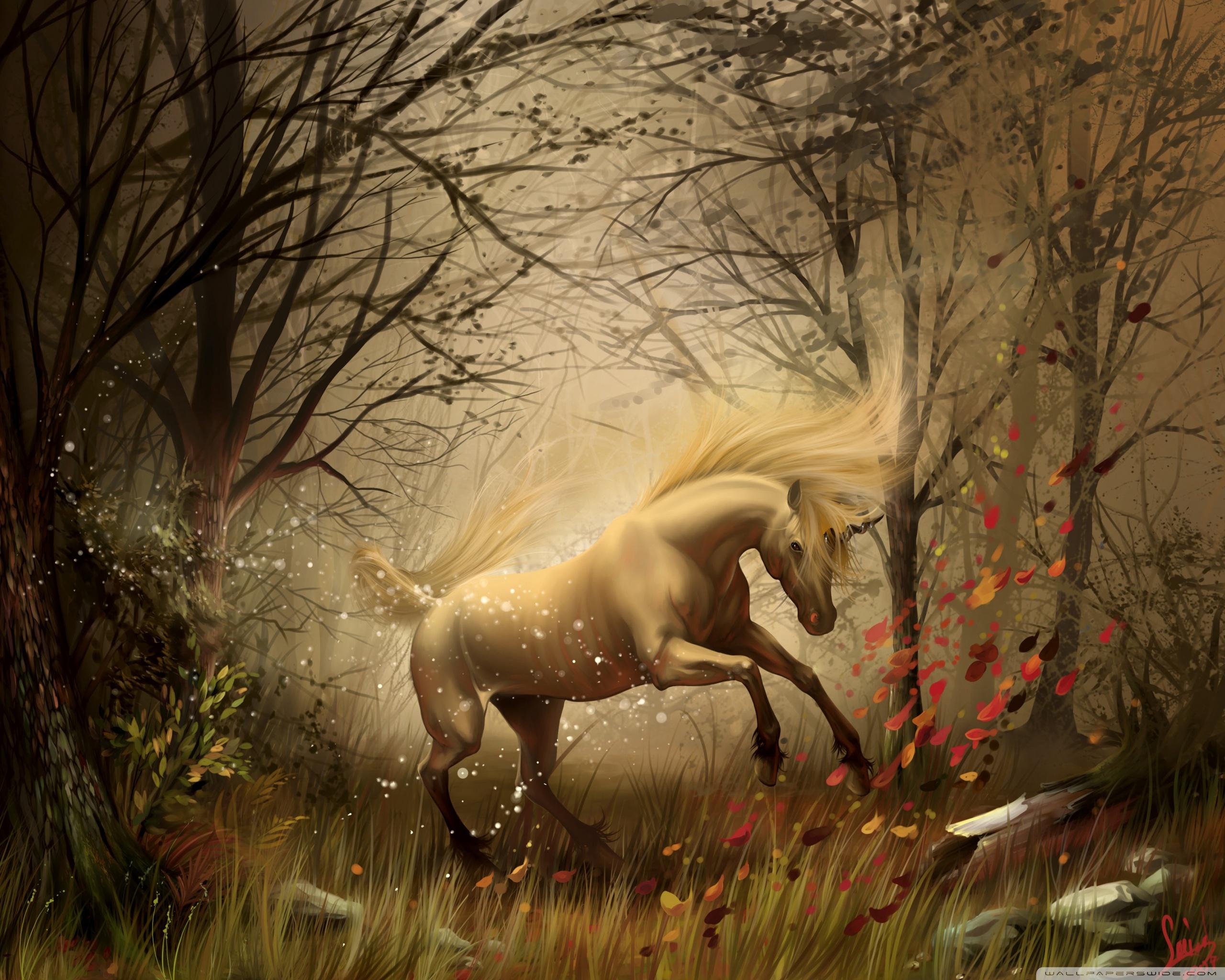 Magic Horse 2560x2048 Wallpaper Teahub Io