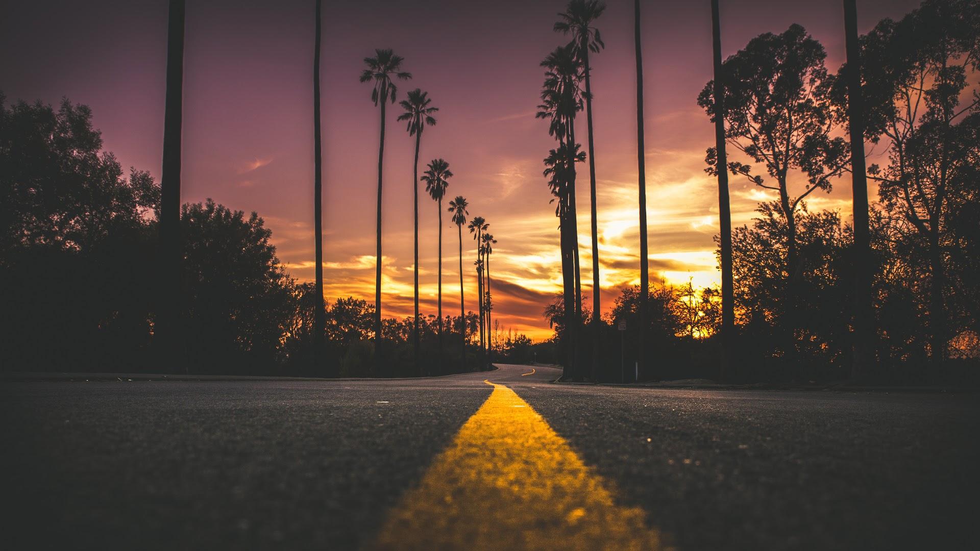 Sunset, Road, Landscape, Scenery, 4k, - Palm Tree Road Background - HD Wallpaper