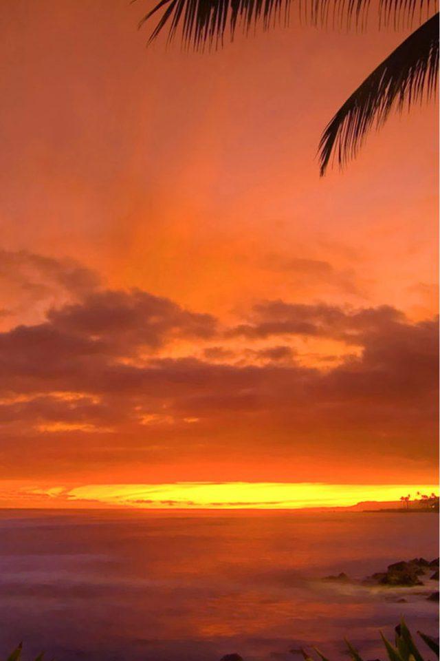 Beautiful Sunset Iphone Wallpaper - Tropical Sunset - HD Wallpaper