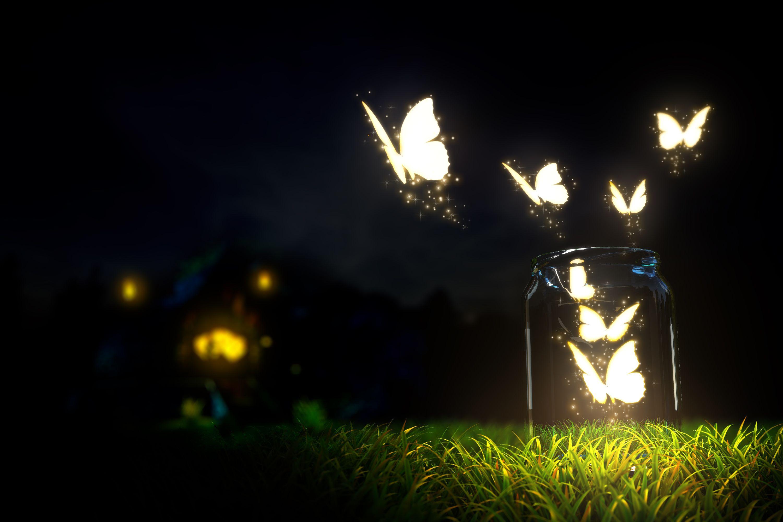 Glowing Butterfly - HD Wallpaper