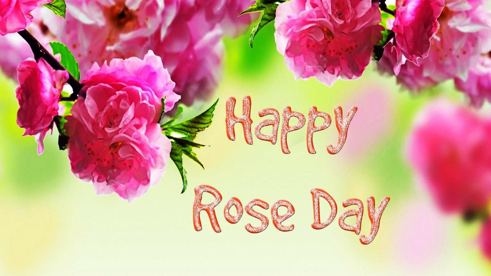 Happy Rose Day Wallpapers - Full Screen Hd Wallpaper Flower - HD Wallpaper